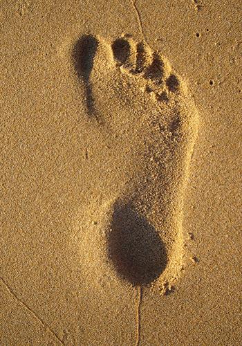 dấu chân