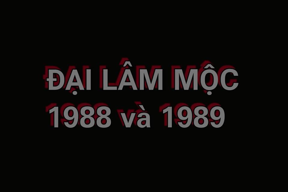 dai-lam-moc