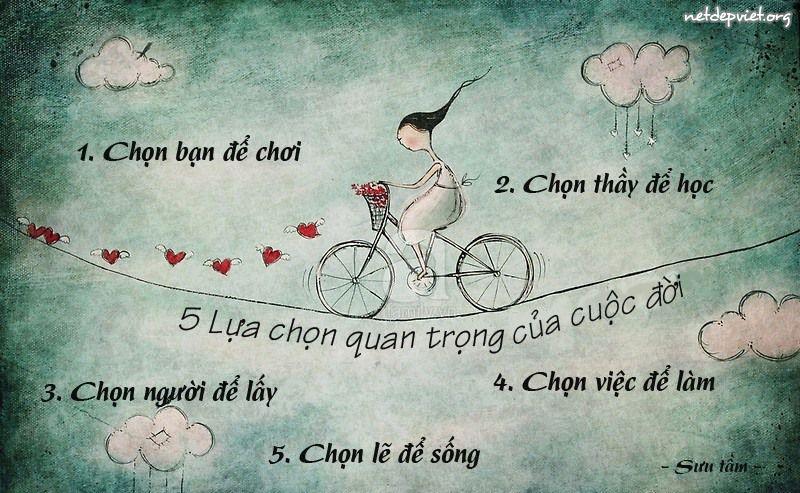 su-lua-chon